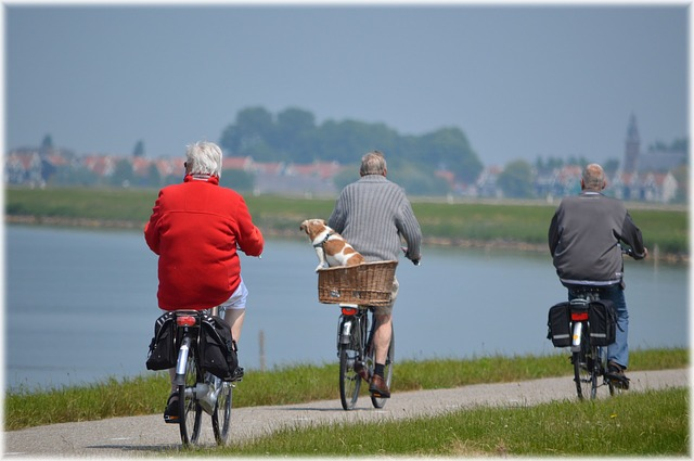 Earning After Retirement: Ways to Finance a Comfortable Lifestyle