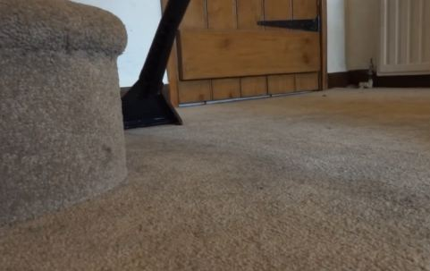 cleaning dirt carpet