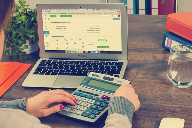 It is all about the Numbers: The Role of Business Accountants