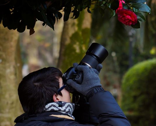 A Quick List of Hints for the Newbie Photographer