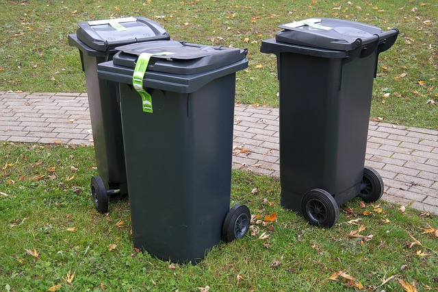 4 Essential Traits to Look for in Skip Bin Companies