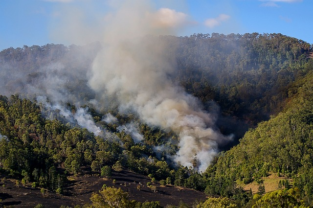 Another Year of Above-Average Fire Risk for Australia