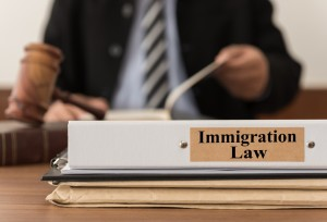 Immigration Lawyer in Utah