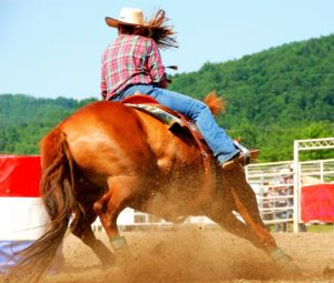 Horse Riding Safety Precautions