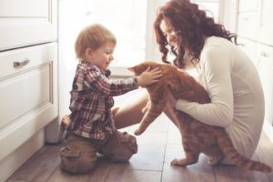 Keep Your Home Flooring in Auckland Child Friendly