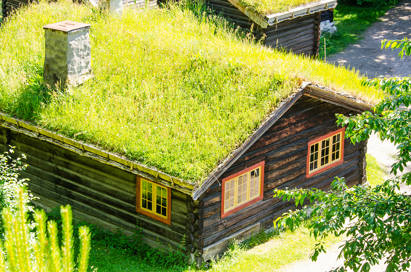 Live Like Bilbo Baggins in Your Own Hobbit Hole
