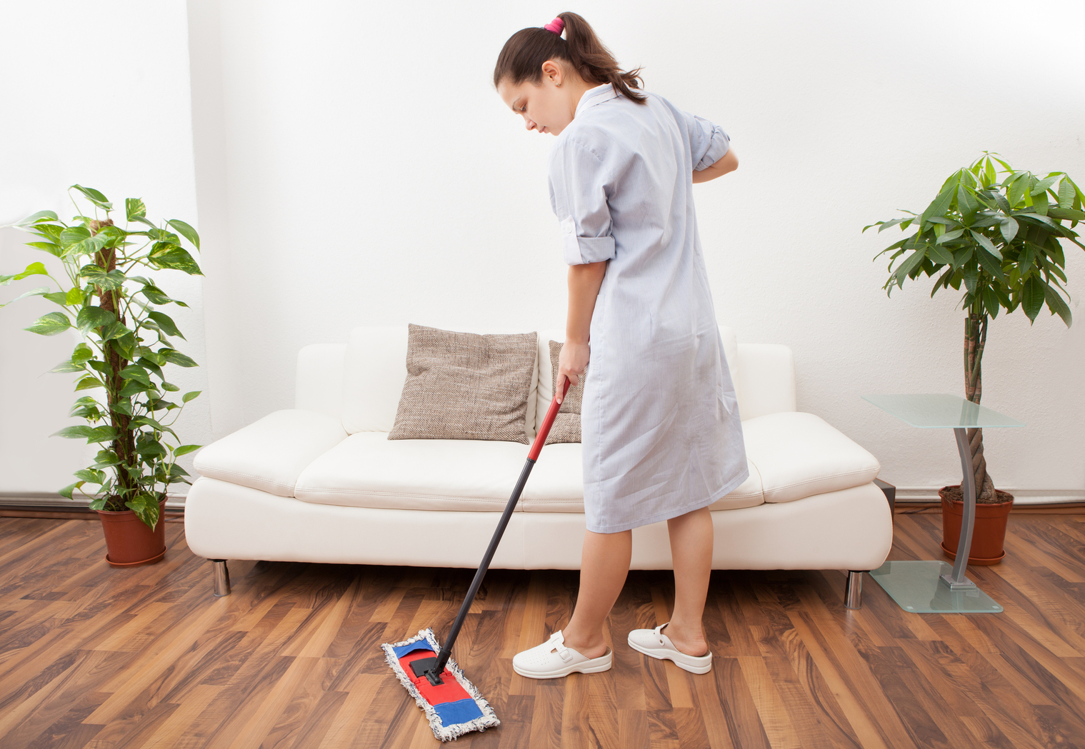 Thinking Big About Home Cleaning