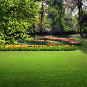 Safe and clean garden