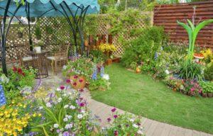 Colorful landscaped backyard