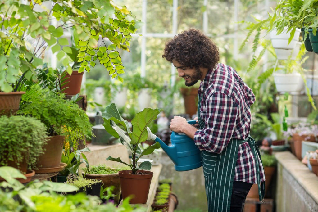 Getting a Greenhouse Protects Your Plants from These Threats