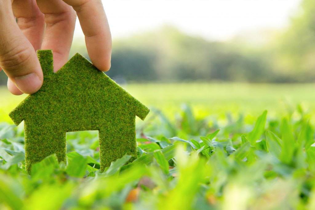 Green Remodeling Ideas for an Eco-friendly and Energy-efficient Home