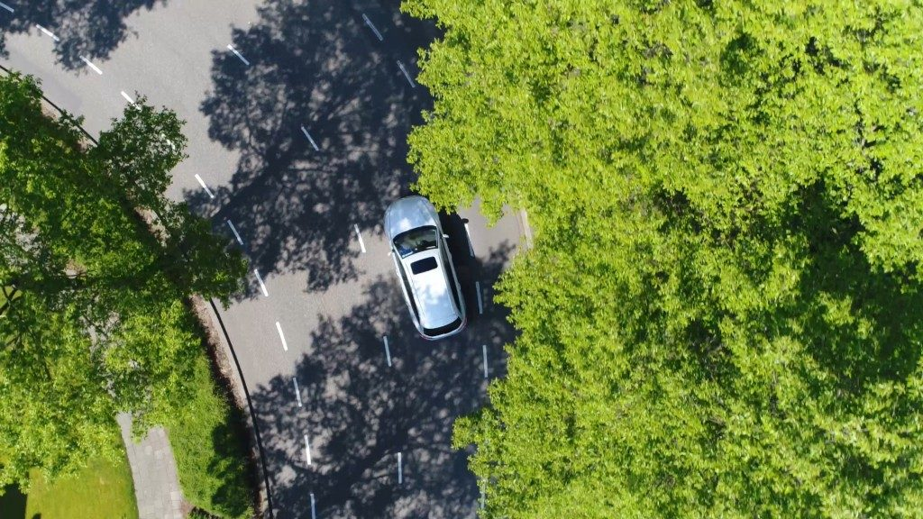 car in the highway surrounded by trees