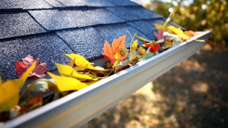 Homely Reasons to Take Gutter Cleaning Seriously
