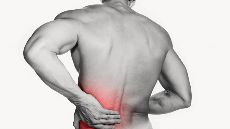 No to Back Pain: Why You Really Need an Ergonomic Chair