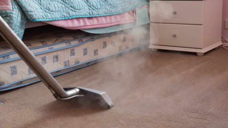 Should You Hire a Professional Cleaning Company?