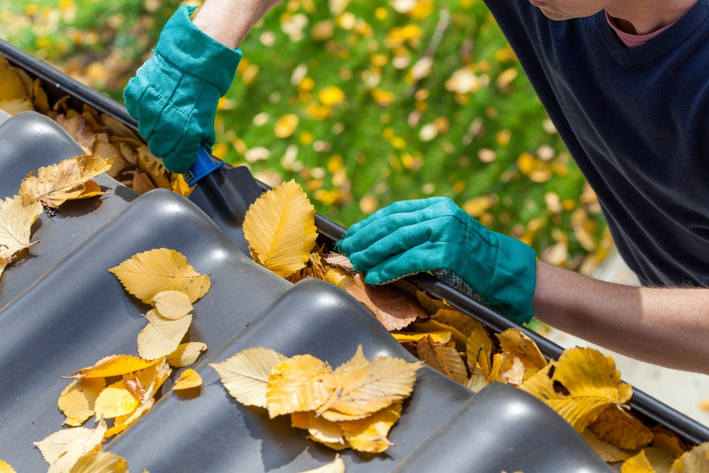 Proper Gutter Maintenance Steps Every Homeowner Should Know