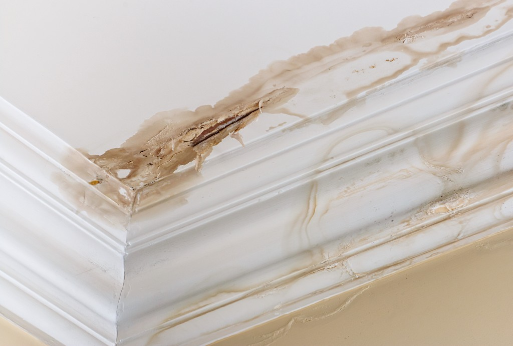 How to Patch Up a Leaky Roof
