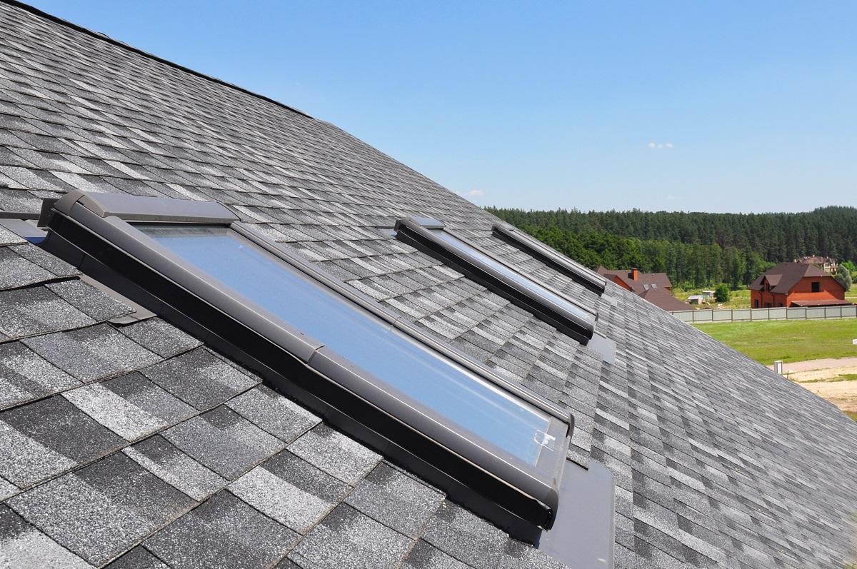 Roof window panels