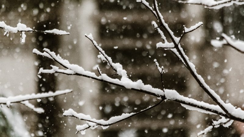 Winter Blues: the Negative Impact of Cold Weather on Mental Health